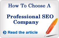 article on choosing a professional seo company