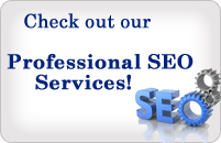 View our professional seo company services